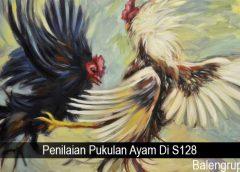 Penilaian Pukulan Ayam Di S128